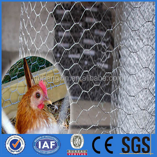 "1/4"" 3/4"" Cheap Chicken Wire /Rabbit wire Mesh /Galvanized Hexagonal Wire Mesh"