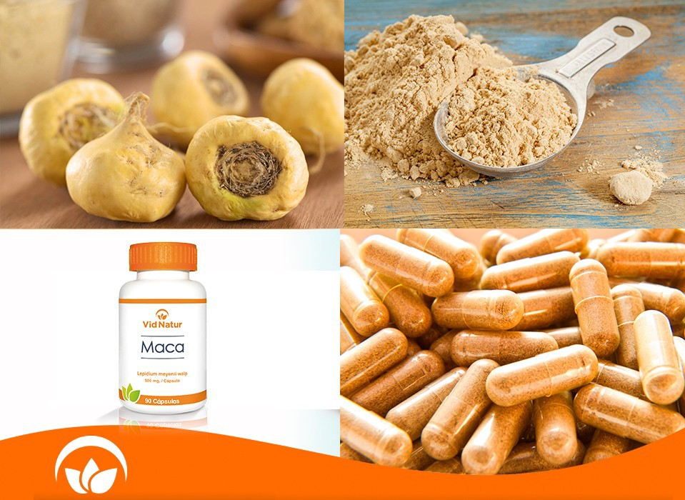 MACA in Capsula or Tablets
