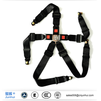 Customized 5 point racing safety harness
