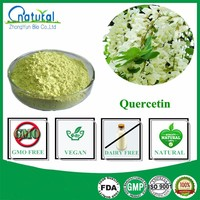 High Quality 98% Bulk Quercetin Powder