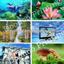 Hot Promotional gift PET lenticular cards/3D picture