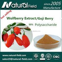 Chinese Ture Manufacturer Since 2005 Goji Berry Powder Wolfberry Extract