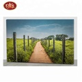 Wholesale spring Design Light up canvas prints wall art decor,spring flowers design canvas printing.