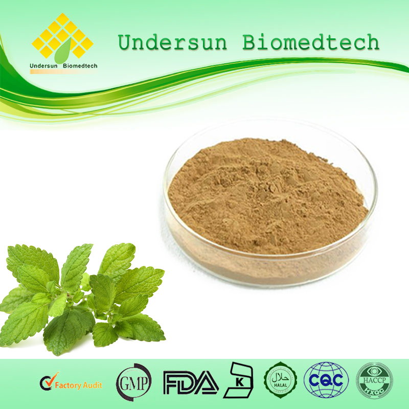 Lemon Balm Leaf powder 5:1 melissa extract natural herb extract