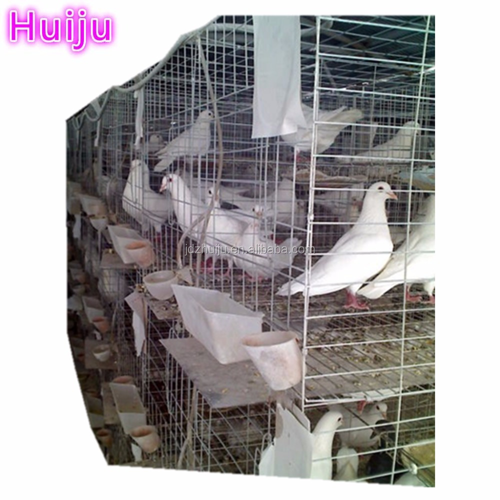 Gold Supplier Steel Racing Transport Pigeon Breeding Cage HJ-PC32