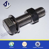 China supplier stainless steel hex bolt with washer and nut