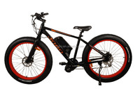 Electric motor MTB bicycle china fat bike with crank motor EN15194 JB-TDE00L