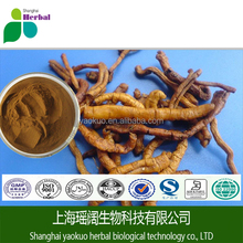 Thinleaf Milkwort Root Extract/Polygala tenuifolia Willd