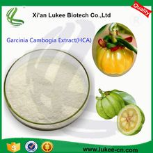 Factory supply Wholesale Garcinia cambogia, Natural Pure Garcinia cambogia extract 50% HCA