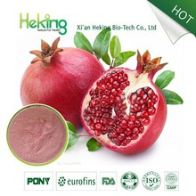 Pure natural Pomegranate Peel Polyphenols Powder Factory/Pomegranate Extract powder