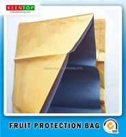 Fruit growing bag apple mango pear grape banana protective bags
