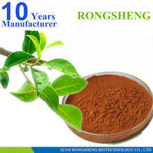 hot sale natural green tea powder extract