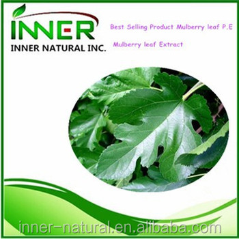 Best Selling Product Mulberry leaf P.E/ Mulberry leaf Extract,1-deoxynojirimycin in Mulberry leaf Extract