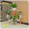 Colorful Home Garden Planters Wrought Iron