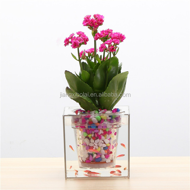 Creative flowerpot hydroponics free irrigation plant pot planter Crystal Cube transparent plastic pots fish for office desktop