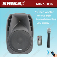 AK12-306 12 Inch professional rechargeable disco usb portable music system