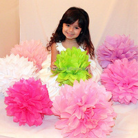 Colorful Tissue Paper Pom Poms Wedding Party Decoration SD002