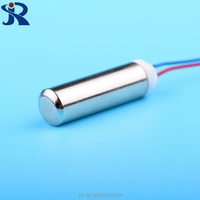 Waterproof Protect Feature and Permanent Magnet Construction dc motor 3v