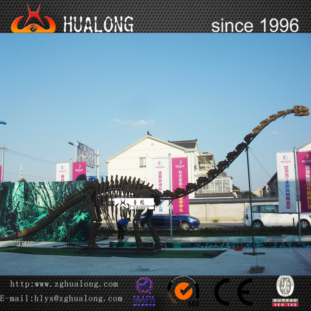 Hand made lifelike natural size dinosaur skeleton replica