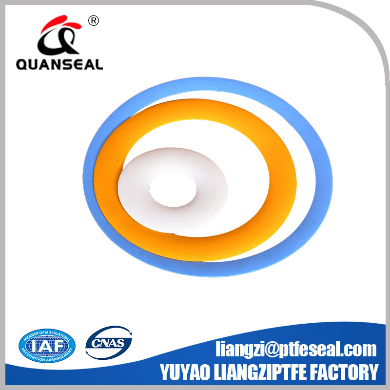 triple start etched ptfe sealing element PTFE LIPS