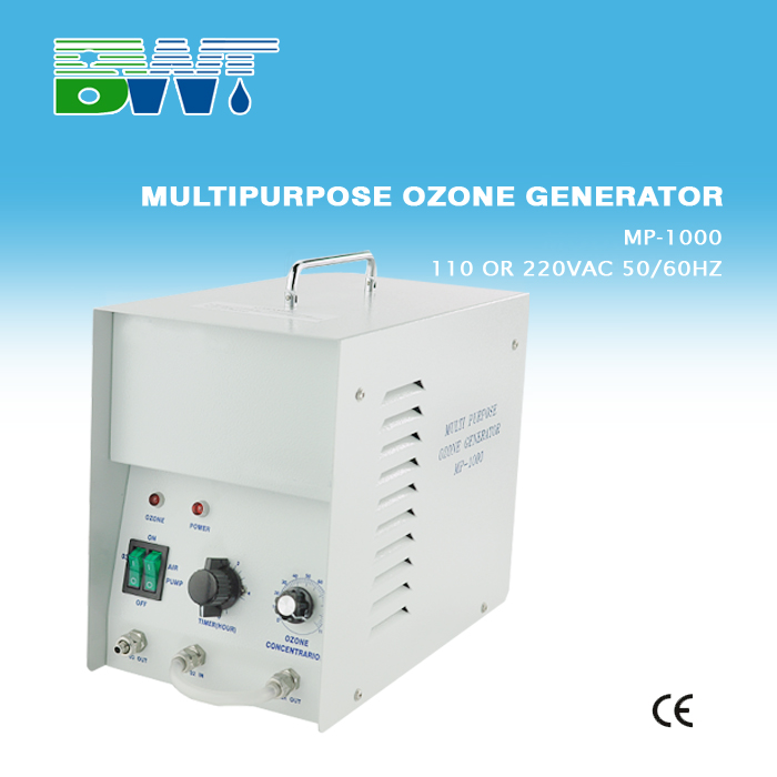 1G portable water bathtub ozone generator made in China