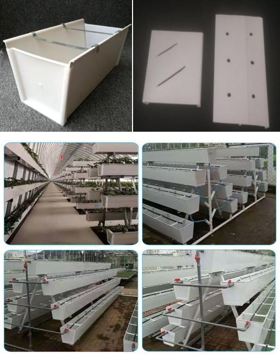 ISO Standard PVC Hydroponic plant growing channel gutter for Strawberry and Tomato