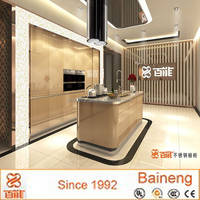 new style stainless steel kitchen cabinet with Platinum space door panel offerd by Baineng company