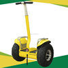 /product-gs/hot-selling-two-wheels-2000w-powerful-off-road-standing-electric-transporter-auto-balance-scooter-60312123068.html