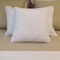 Hot Sale White Insert Cushion