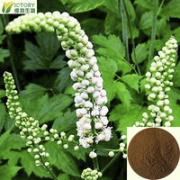 100% nature black cohosh extract powder /high quality black cohosh p.e.