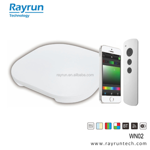 Rayrun WN02 Smartphone bluetooth Network Master-Slave sync. LED controller