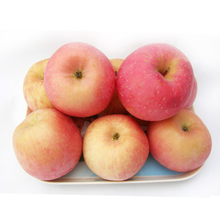 Wholesale Fresh Red Globe Apple Italy