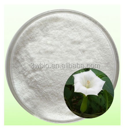 cGMP Certified Factory price Belladonna Liquid Extract/Scopolamine 1%