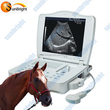 Vet Digital portable ultrasound machine brands