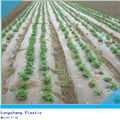 PE Heat Preservation Agricultural Film for mulching