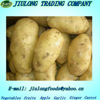 Fresh potato seed price 2013
