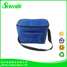 2015 Foldable Insulated 600d Polyester Lunch Cooler Bag with bottle holder