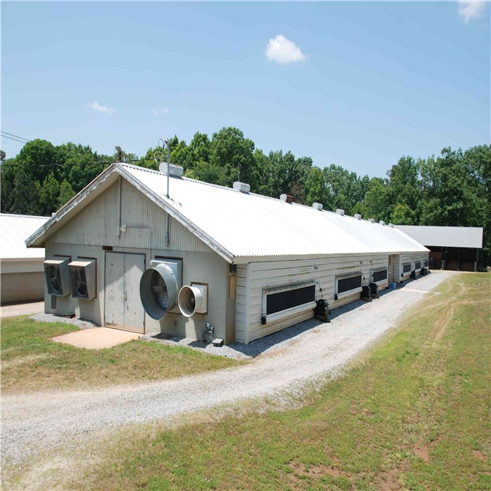 Prefabricated Chicken House Steel Structure Poultry Farm