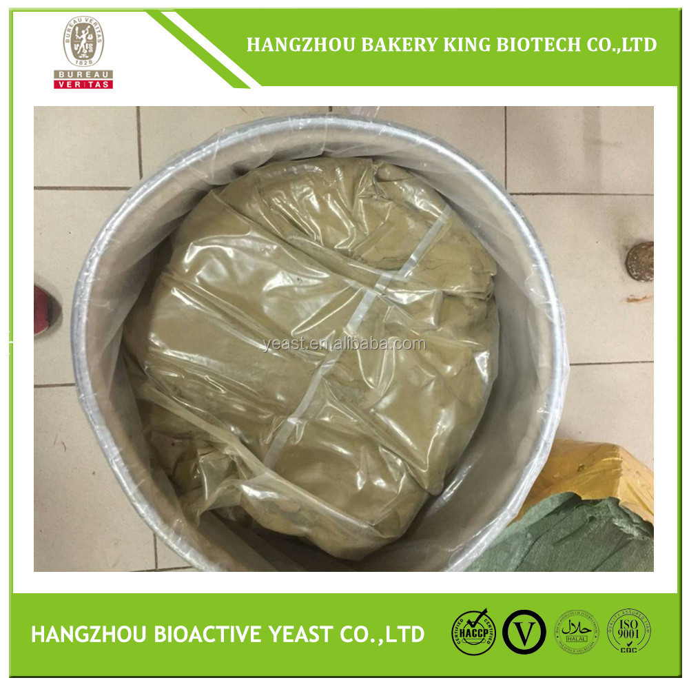 High quality cheese making rennet/Microbial powder form rennet