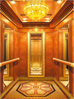 Best quality and low price commercial elevators for sale