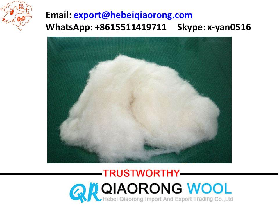 best price sheep wool for wool felt and wool roving