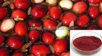 Hot sale top quality& good price 100% natural Cranberry P.E