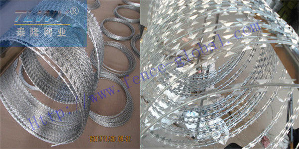 High quality galvanized razor wire