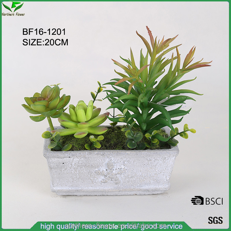 charming lifelike cheap mini artificial succulent plant with cement pot