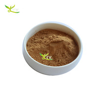 High quality Yerba Mate extract powder