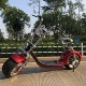 2019 Year Hot sale New Model 800W Motor Fat Tire Mobility Big Electric scooter