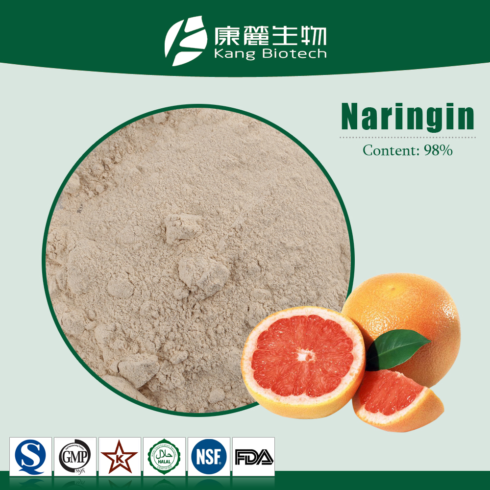 GMP Factory 100% Natural Pomelo Peel Extract Grapefruit Seed Extract Powder 98% Naringin Powder