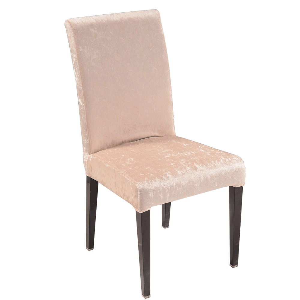 Steel cushion chairs for sale