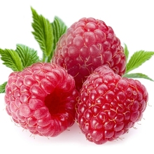 Pure natural plant extracts loss weight product Raspberry Extract Powder / 90% Raspberry ketone extract