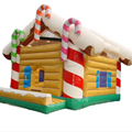 inflatable christmas bouncer/inflatable bouncy castle for sale